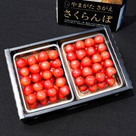 【ふるさと納税】高品質さくらんぼ「紅秀峰」 700g 秀品・Lサイズ以上! ≪Y字栽培≫ 数量限定