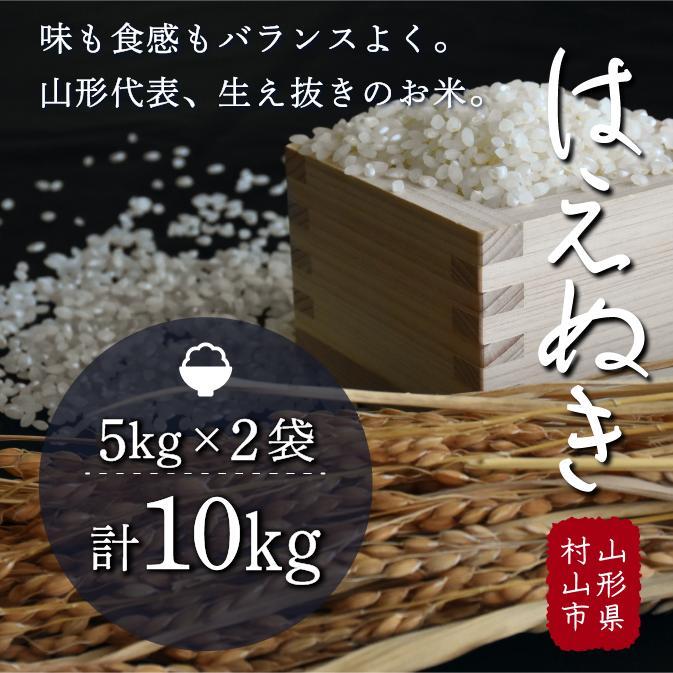 【ふるさと納税】H30年産米 「はえぬき」 10kg