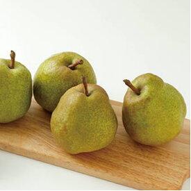 【ふるさと納税】 ラ・フランス 約5kg ラフランス 令和二年産 果樹 くだもの 山形県 村山市 送料無料