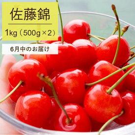 【ふるさと納税】先行予約 2020年産さくらんぼ(佐藤錦)500g×2パック
