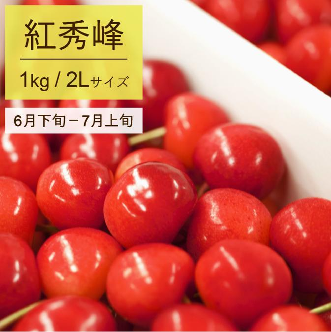 【ふるさと納税】さくらんぼ 2019年産(紅秀峰)500g×2パック