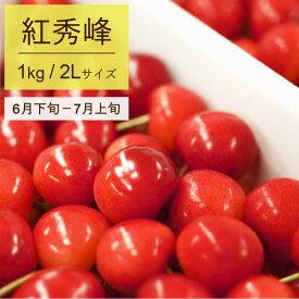 【ふるさと納税】さくらんぼ 2020年産(紅秀峰)500g×2パック