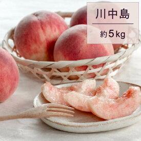 【ふるさと納税】もも 桃 川中島 約5kg 秀 20玉以上 令和二年産 2020年産 果物 送料無料
