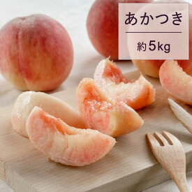 【ふるさと納税】もも 桃 あかつき 約5kg 秀 22玉以上 令和二年産 2020年産 果物 送料無料