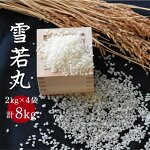 【ふるさと納税】H30年産米「雪若丸」8kg