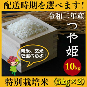 【ふるさと納税】 米 10kg 5kg×2 つや姫 特別栽培米 新米 精米 玄米 令和2年産 2020年産 山形県村山市産 送料無料 先行予約