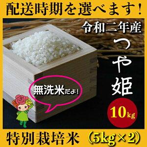 【ふるさと納税】 米 10kg 5kg×2 つや姫 特別栽培米 新米 無洗米 令和2年産 2020年産 山形県村山市産 送料無料 先行予約
