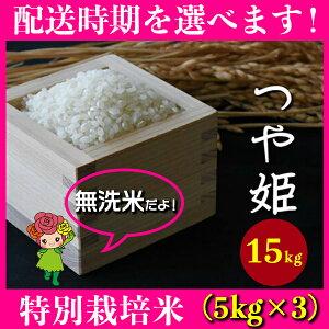 【ふるさと納税】 米 15kg 5kg×3 つや姫 特別栽培米 無洗米 令和元年産 山形県村山市産 送料無料