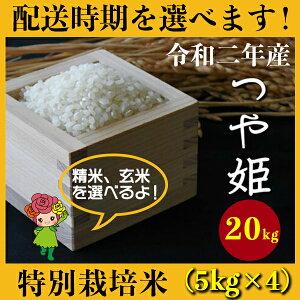 【ふるさと納税】 米 20kg 5kg×4 つや姫 特別栽培米 新米 精米 玄米 令和2年産 2020年産 山形県村山市産 送料無料 先行予約