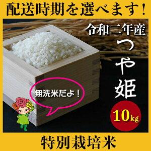 【ふるさと納税】 米 10kg 5kg×2 つや姫 特別栽培米 新米 無洗米 令和2年産 2020年産 山形県村山市産 送料無料