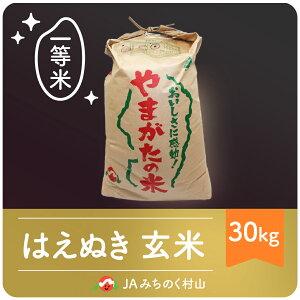 【ふるさと納税】玄米 30kg はえぬき 米 令和2年産 山形県村山市産 送料無料