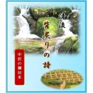 【ふるさと納税】お米 コメ 中沢の棚田米 つや姫 10kg 令和2年産 山形県村山市