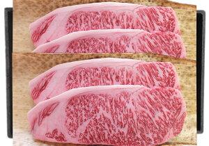 【ふるさと納税】山形牛サーロインステーキ約200g×4枚 肉の工藤提供 B-0032
