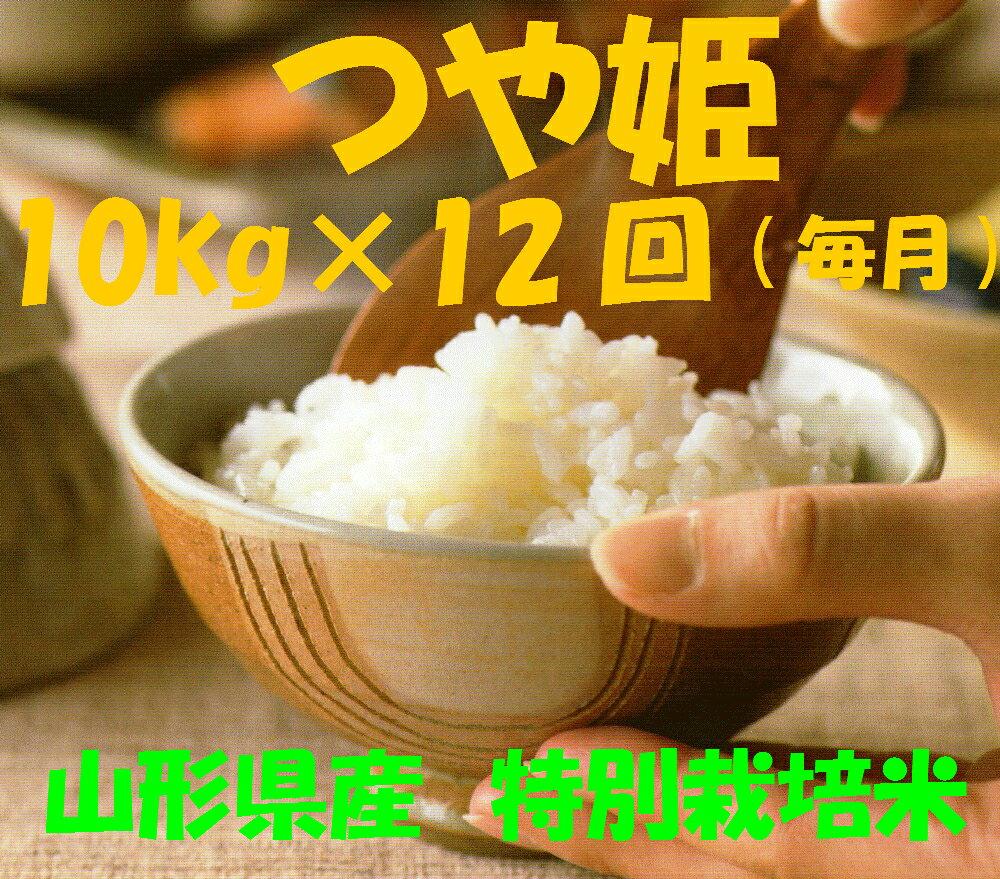 【ふるさと納税】D-0097 ☆特別栽培米「つや姫」10kg×12回(毎月)定期便