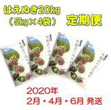 【ふるさと納税】U-12572019年産[精米・定期便]はえぬき20kg×3回(2020年2月,4月,6月各月下旬送付)植松商店提供