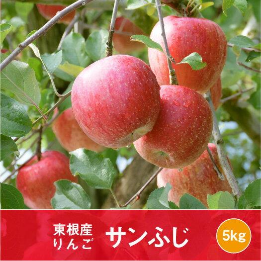 【ふるさと納税】A-0650 2019年産 りんご「サンふじ」5kg 観光物産協会提供
