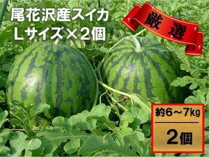 尾花沢産スイカLサイズ(約6〜7kg)×2