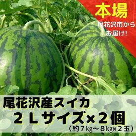【ふるさと納税】尾花沢産スイカ 2Lサイズ(約7〜8kg)×2 令和3年産 すいか 送料無料