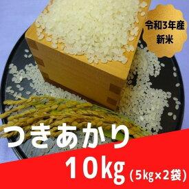 【ふるさと納税】令和3年産米 つきあかり5kg×2袋 計10kg 山形県尾花沢市産 ご希望の時期頃にお届け