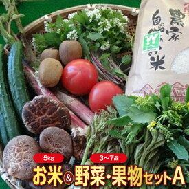 【ふるさと納税】山形県産 お米5kgと野菜・果物(3〜7品程度)セットA