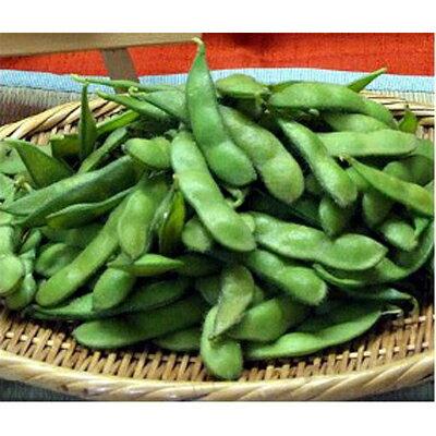 【ふるさと納税】秘伝豆(えだまめ)約3kg!