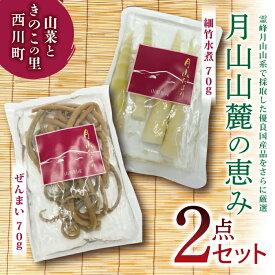 【ふるさと納税】ぜんまい・細竹水煮 2点セット 『山菜ときのこの里 西川町』