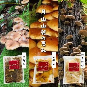 【ふるさと納税】《山菜ときのこの里西川町》天然きのこ水煮3種セット FYN9-135