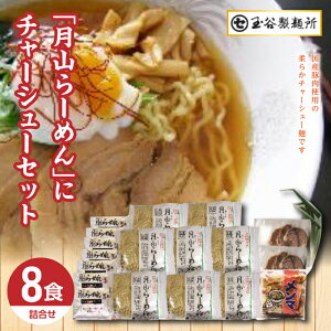 【ふるさと納税】チャーシュー麺セット FYN9-288