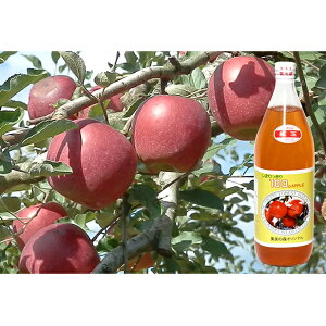 【ふるさと納税】大江の恵 昔なつかしのすっきり紅玉6本ギフト 【果実飲料・ジュース・りんごジュース】
