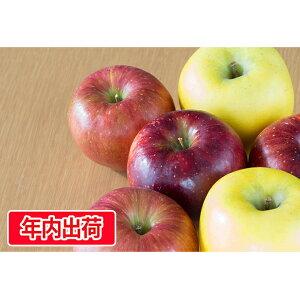 【ふるさと納税】贈答用旬のりんご詰合せ約3kg(サンふじ確約3〜4種)大江町産 【果物類・林檎・りんご・リンゴ・アップル】 お届け:2019年12月10日〜2019年12月23日