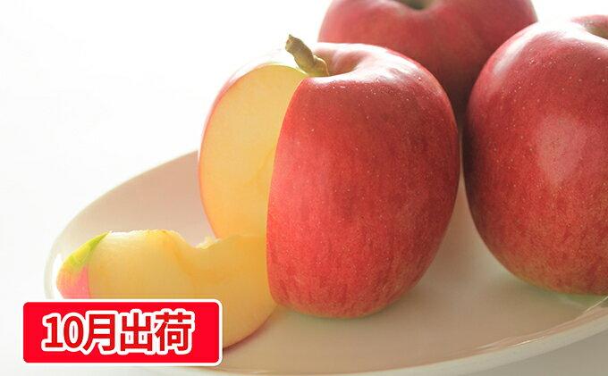 【ふるさと納税】贈答用シナノスイート約5kg(16〜23玉)大江町産 【果物類・林檎・りんご・リンゴ・アップル】 お届け:2019年10月10日〜2019年10月21日