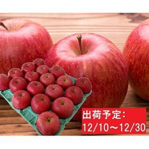 【ふるさと納税】山形県産 贈答クラスサンふじ約5kg(秀・16〜20玉) 【果物類・林檎・りんご】 お届け:2020年12月10日〜2020年12月30日