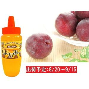 【ふるさと納税】大江町産 旬のすもも(プラム)約1.5kg ハチミツ500gセット 【果物・詰合せ・セット・フルーツ・もも・蜂蜜】 お届け:2020年8月20日〜2020年9月15日