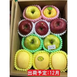 【ふるさと納税】12月 贈答用旬のりんご詰合せ約3kg(サンふじ確約3種以上)特秀〜秀 大江町産 【果物類・林檎・果物類・フルーツ・詰合せ】 お届け:2020年12月1日〜2020年12月23日
