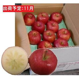 【ふるさと納税】11月 訳ありこうとく約4.5kg 大江町産 【果物類・林檎】 お届け:2020年11月1日〜2020年11月15日