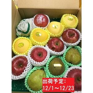 【ふるさと納税】12月 贈答用「サンふじ」「ラフランス」「はるか」約5kg詰合せ(特秀〜秀)大江町産 【果物類・林檎・柑橘類・みかん・フルーツ・詰合せ】 お届け:2020年12月1日〜2020