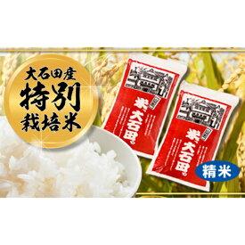 【ふるさと納税】32-[1]【令和2年大石田町産特別栽培米】はえぬき10kg(精米)×3回コース