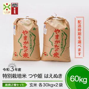 【ふるさと納税】米 先行予約 令和3年産 つや姫 はえぬき 各30kg 計60kg 大石田町産 特別栽培米 玄米 送料無料