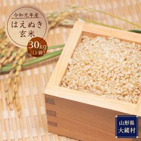 【ふるさと納税】令和元年産 はえぬき玄米30kg(30kg×1袋:1回発送)