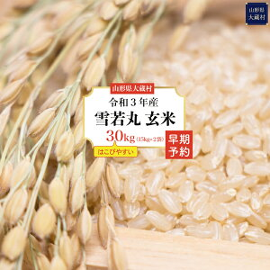 【ふるさと納税】<令和3年産早期予約>雪若丸【玄米】30kg(15kg×2袋)