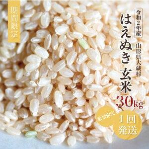 【ふるさと納税】こだわりの玄米!令和2年産 はえぬき玄米 30kg(15kg×2袋)