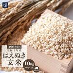 【ふるさと納税】令和3年産大蔵村はえぬき【玄米】10kg