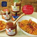 【ふるさと納税】大蔵村産完熟ミニトマト満喫セット