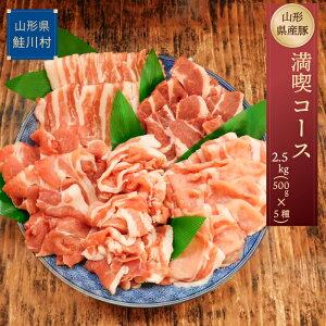 【ふるさと納税】山形県産豚 満喫コース2.5kg!(500g×5種)