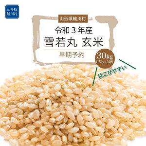 【ふるさと納税】《令和3年産米早期予約》 雪若丸【玄米】30kg
