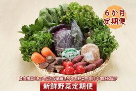 【ふるさと納税】<4月開始>新鮮野菜6か月定期便!産直施設「あっでば」直送(入金期限:2021.3.25)