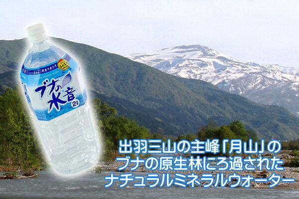 【ふるさと納税】【A-352】月山の名水「ブナの水音」12リットル
