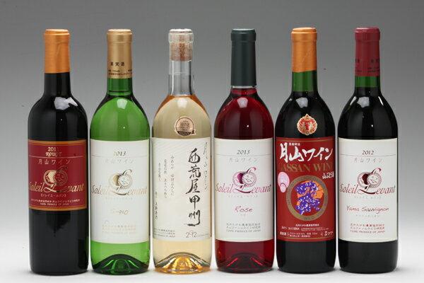 【ふるさと納税】【J-561】月山ワイン6本セット