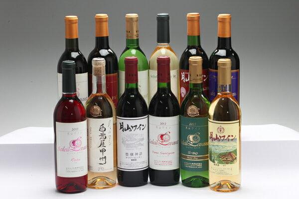 【ふるさと納税】月山ワイン12本セット