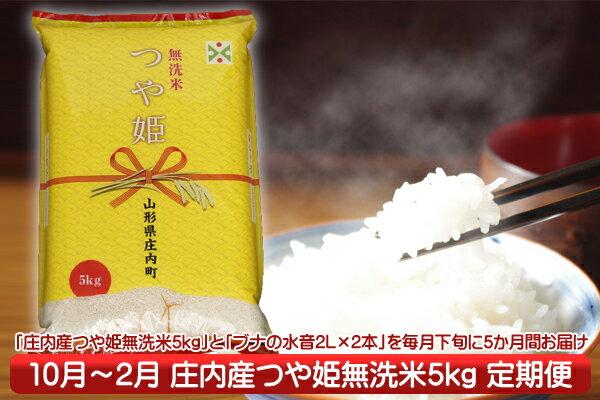 【ふるさと納税】【J-848】庄内米定期便!つや姫無洗米5kgセット(10月下旬より配送開始 入金期限:H30.9.25)